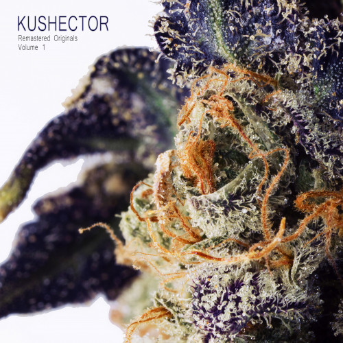 KUSHECTOR Remastered Originals Vol. 1 Cover