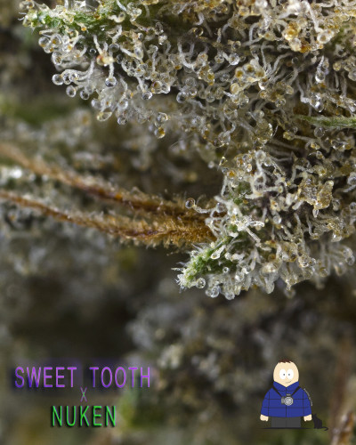 3.  Sweet Tooth x Nuken - Escarpment Wellness