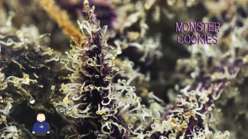 3. Monster Cookies - Escarpment Wellness