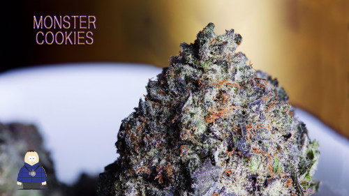6. Monster Cookies - Escarpment Wellness