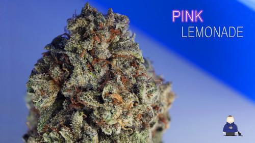 6. Pink Lemonade -Escarpment Wellness